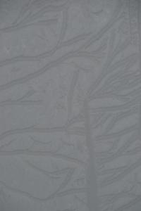 Frosty pattern on porch glass roof.