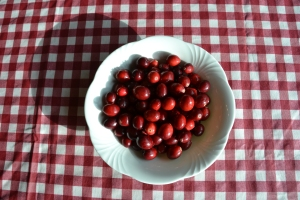 Delicious looking Cranberries.
