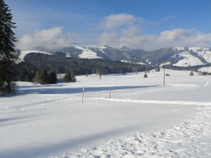 See all this nice, flat area for cross country skiing....